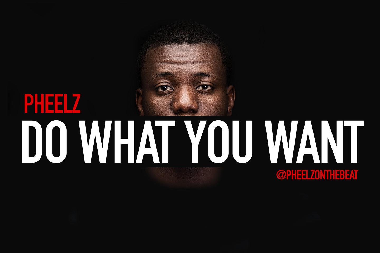 Pheelz - Do What You Want (prod. Pheelz)