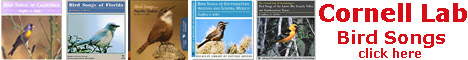 See all the audio CDs from the Cornell Lab of Ornithology