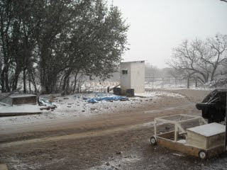 2009 Texas Snow Flurries