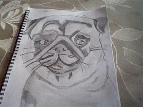pug drawing    year   slashclaws  deviantart