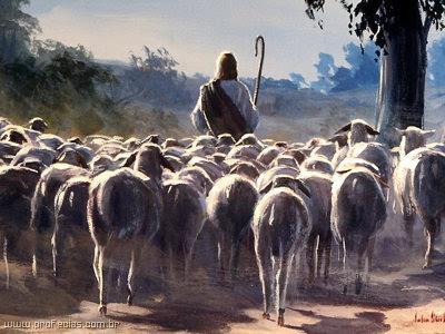 OVELHAS, VOZ, PASTOR, CHAMAR, ESTUDOS BIBLICOS, TEOLOGICOS