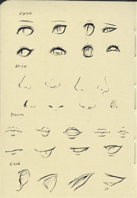 reference eyesnosemouthear  ryky  deviantart