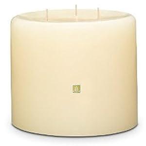 Amazon.com: Partylite Vanilla Citron 3 Wick Pillar Candle ...