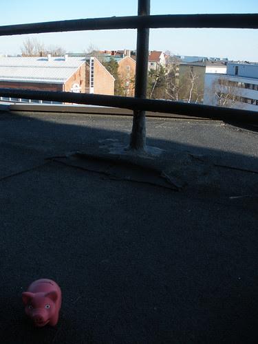 Pigsback Piggy in Helsinki