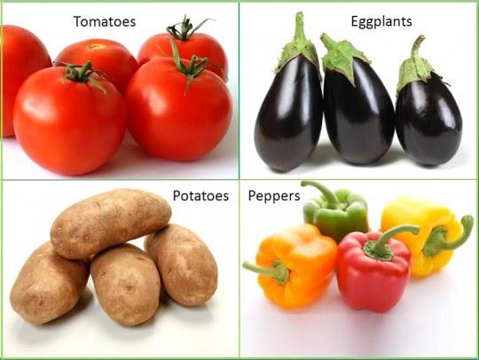 Alguns exemplos de vegetais da família das solanáceas: tomate, berinjela, batatas e pimentões. Créditos: janeshealthykitchen.com