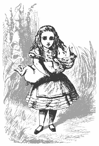 Alice and pig baby