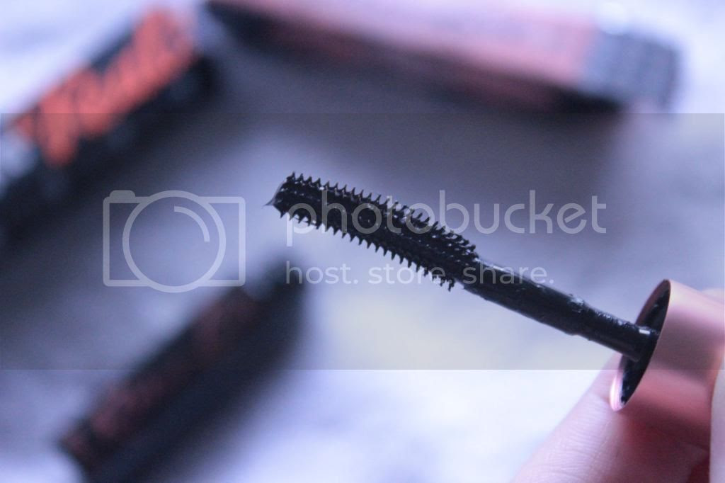 photo Roller Lash brush.jpg