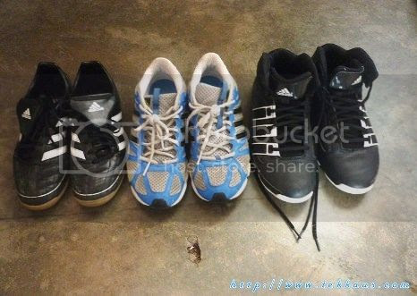 photo 01 I Love Adidas Because Of Its 3 Stripes_zpsixbmyaxa.jpg