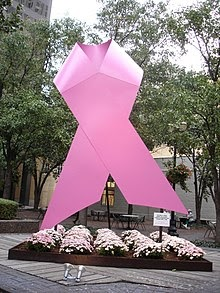 Diy Breast Cancer Fundraiser Ideas