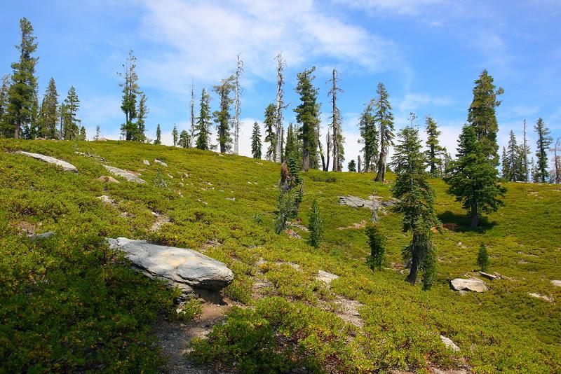 IMG_1148 Sifford Lake Trail