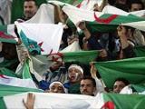 supporter-algériens mondial 2014