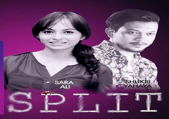 SINOPSIS SPLIT TV SERIES (ASTRO CITRA)