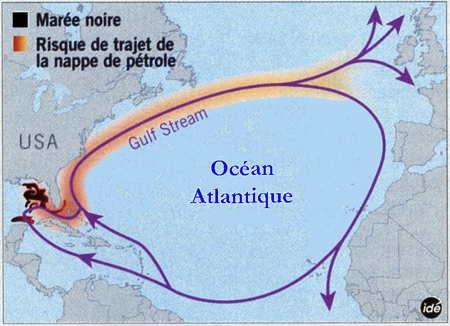 http://baladesnaturalistes.hautetfort.com/media/02/01/1592620131.jpg