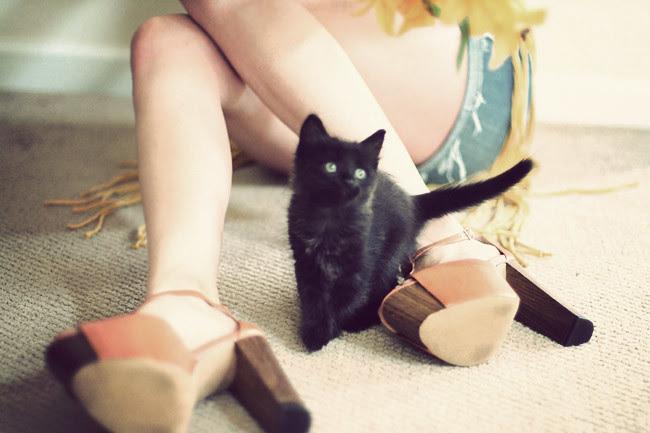 Wildfox Couture, Jessica Simpson Dany platform sandals, Seventies Fashion, Hippie Fashion, Black cat, Black Kitten, Outfit