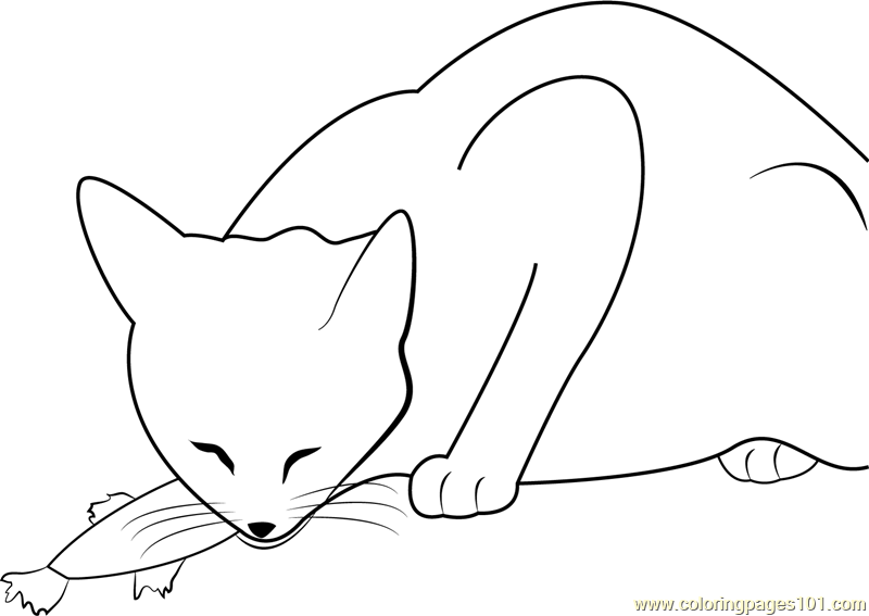 Cat Eats Fish Coloring Page - Free Cat Coloring Pages ...