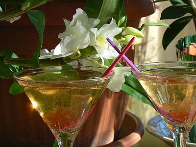 cocktail rose 3.jpg