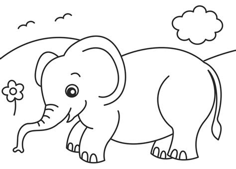 coloring pages jungle jungle background coloring pages