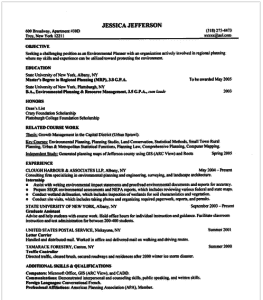 chronological resume example 263x300