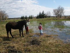 Girls - and Bailey the Pony - Doing a Nature Study