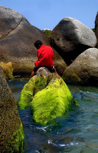 Pescador, Parque Nacional Natural Tayrona