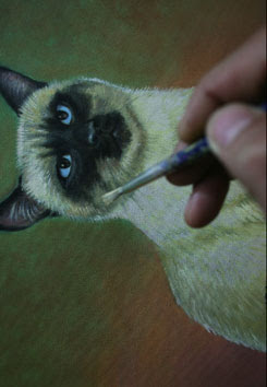 Cat Painting Stage 9