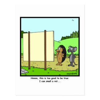 Smell a rat: Rat Cartoon Postcard