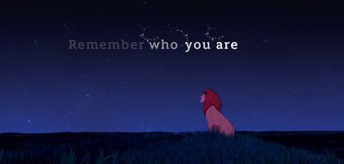 Gif Quote Disney Lion King Lovely Lion Simba Mufasa Hakuna Matata