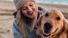 Las mejores razas de perro para tratar la depresión
