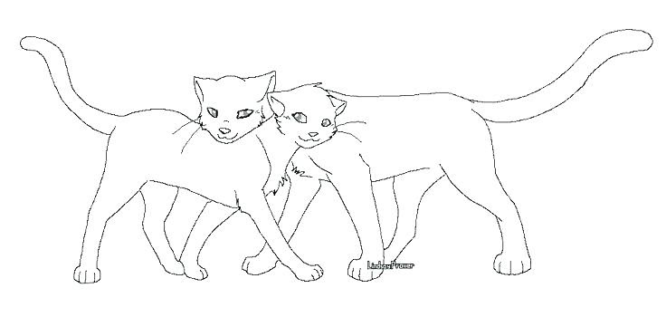 Anime Warrior Cats Coloring Pages - Anime Wallpapers