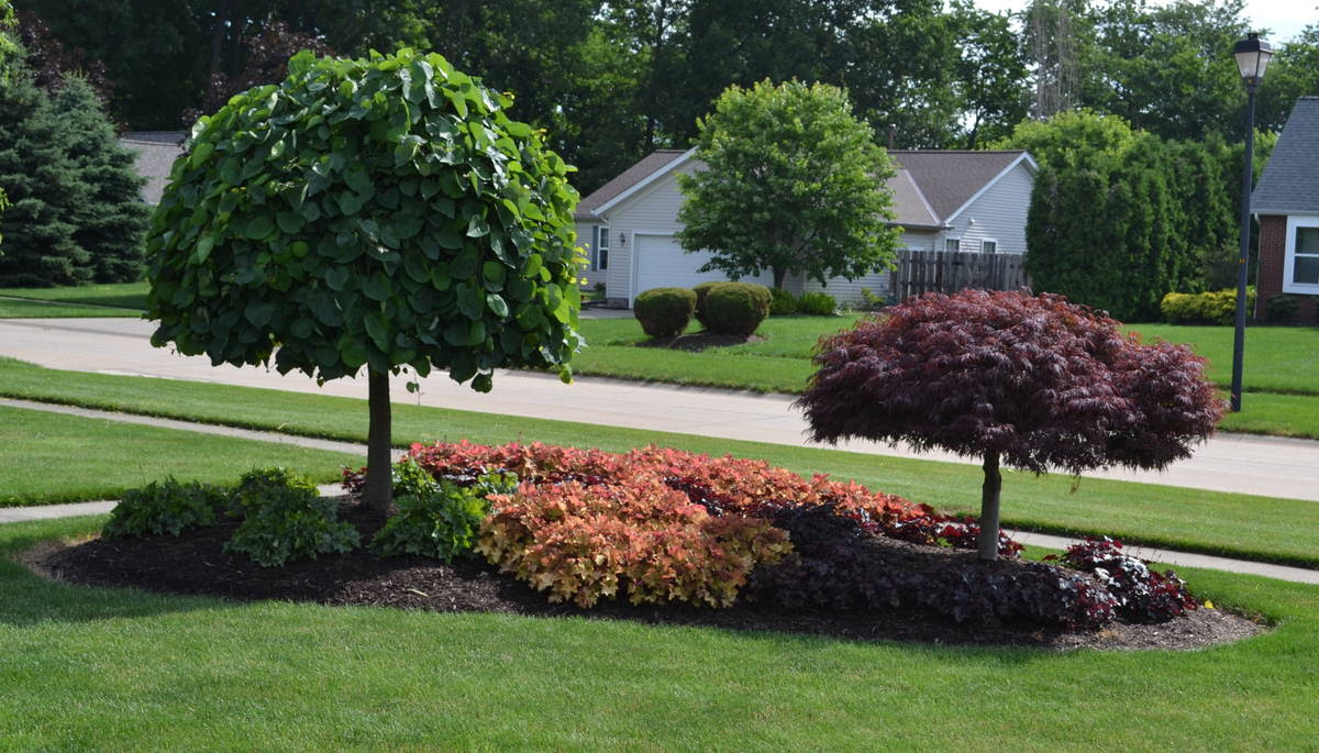 Small Front Yard Landscape Ideas