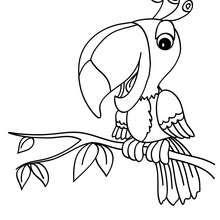 Dibujos Para Colorear Aguila Real Eshellokidscom