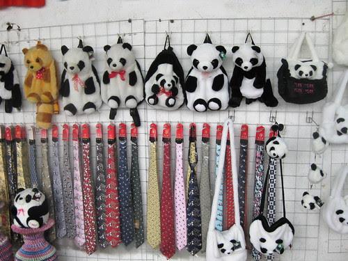 Pandaphenelia, Chengdu