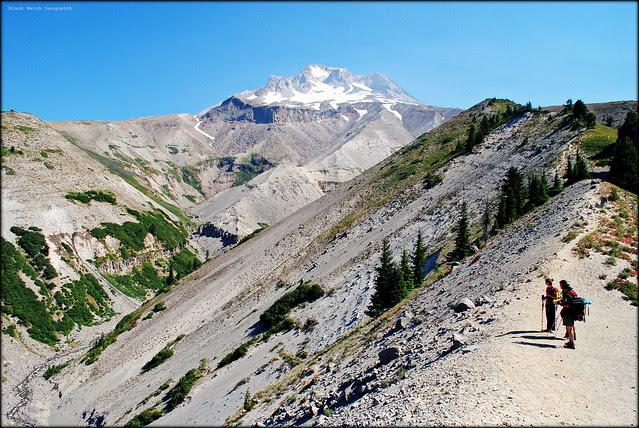 Zigzag Canyon Viewpoint - Timberline Trail / PCT