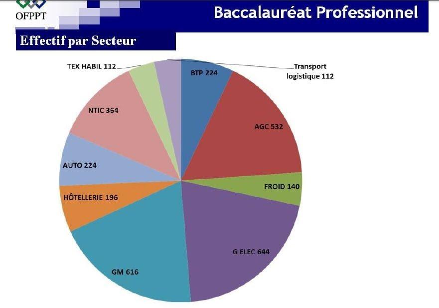 أهداف البكالوريا المهنية