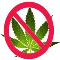 Nej till Cannabis