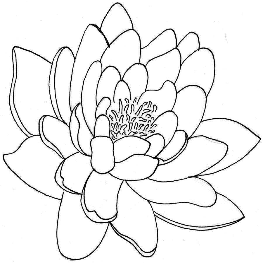 Lily Pad Flower Tattoos