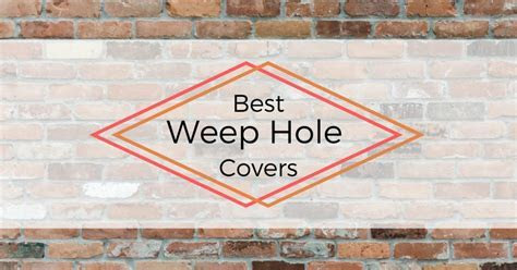 Best Weep Hole Covers   Pest Survival Guide