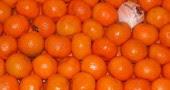 13. Succo d'arancia: il fruttosio contenuto in un bicchiere di succo d'arancia e la vitamina C contribuiscono a combattere lo stress e l'ossidazione causate dai radicali liberi. Inoltre danno energia e le vitamine svolgono un ruolo chiave nella metabolizzazione del ferro   (Foto: Fernando Camino/Cover/Getty Images)