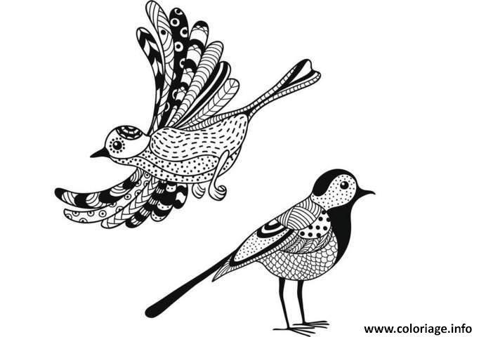 Coloriage Anti Stress Animaux Oiseaux Jecoloriecom