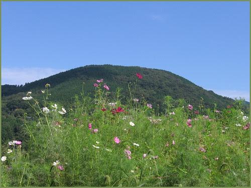 12 colorful Ohaga mountains