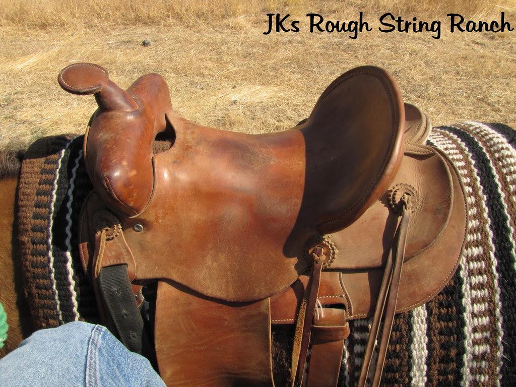 The Training Saddle