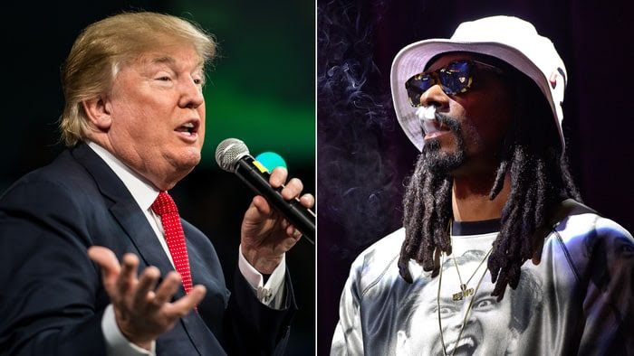 Image result for snoop dogg donald trump