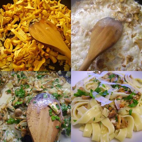 Tagliatelle, Italian food, Timbale, wine gravy