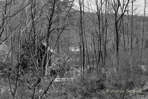 View of Home from Beaver Dam 5 (2 of 4).jpg