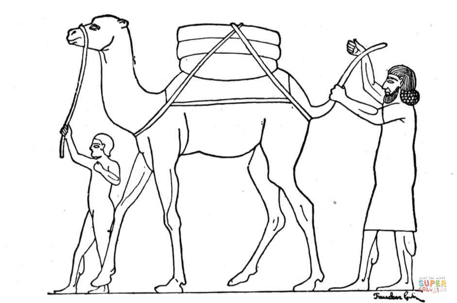 camel with man coloring page