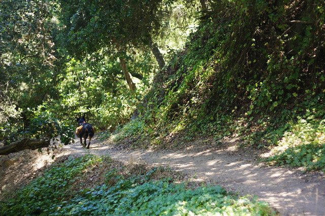 Rita on Trail