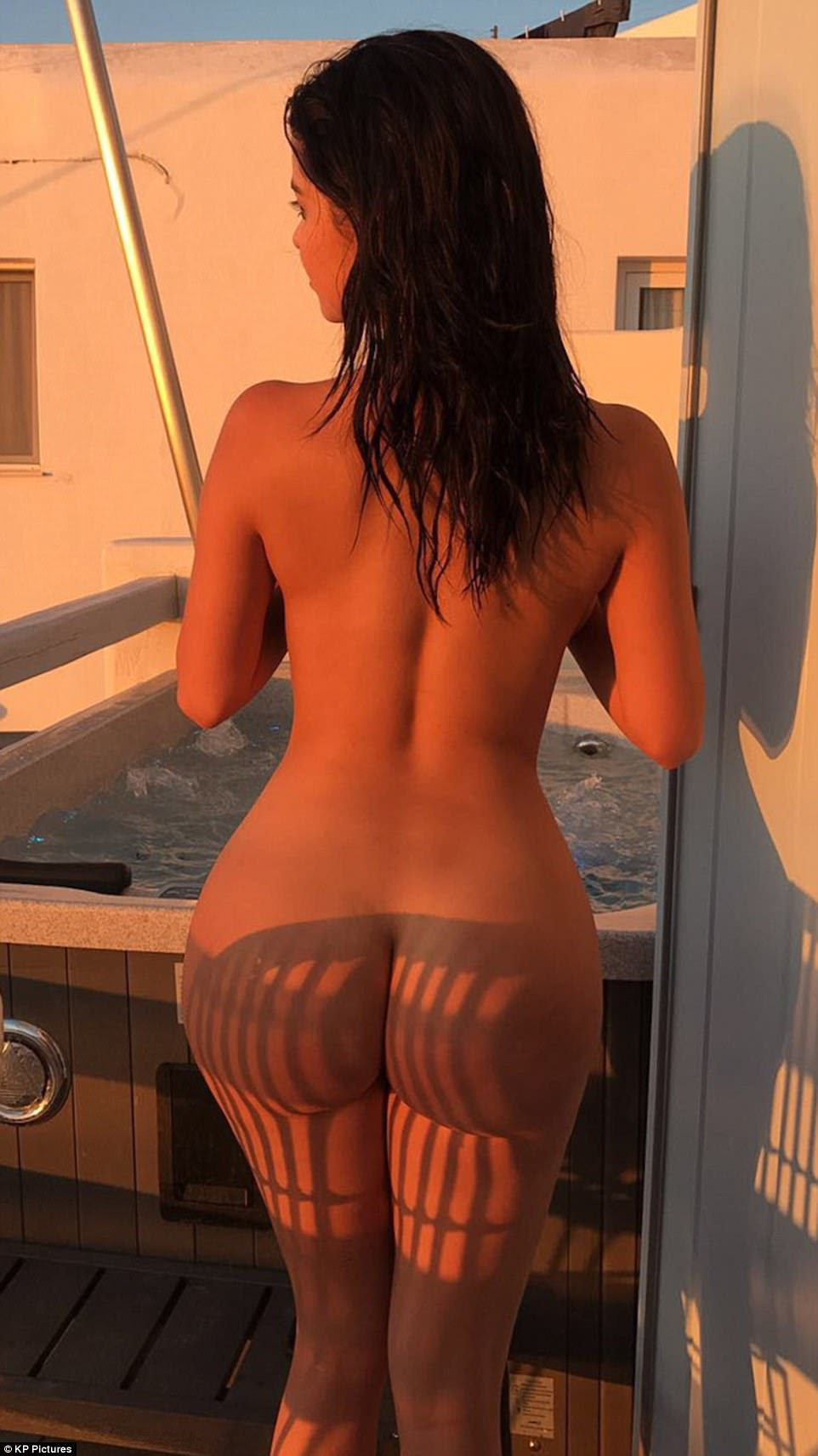 Raunchy: Demi bared all in a nude photo, which showed off her peachy posterior in all its glory