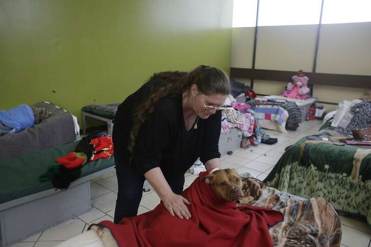 June Woolery, homeless client, wraps a blanket around her dog Sammy on a bed next to hers, as she spends time at the long term shelter on the women's floor at Episcopal Community Services Next Door Shelter on Tuesday, January 19, 2016 in San Francisco, Calif.