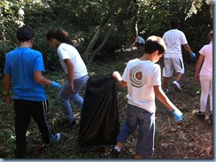 Cleaning the forest DELASALLE -- COMENIUS-21