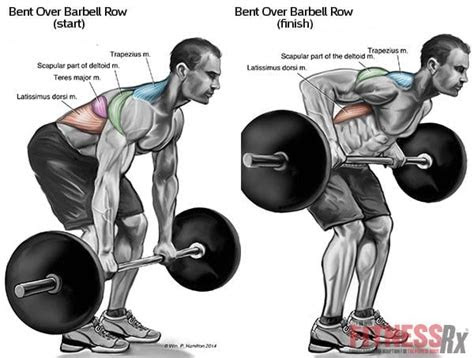 build  wider     exercises